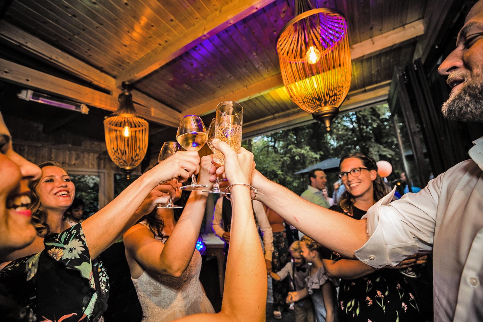 Bruiloft Feest Dutch Biz